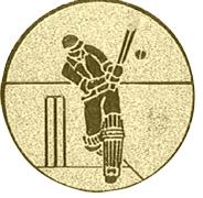 Cricket afslag