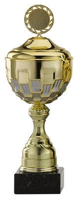 Gouden sportprijzen met zilver accent - 12 Groottes