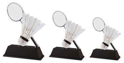 Bijzondere badminton sportprijs, in 3 groottes.