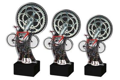 Acryl sportprijs in 3 groottes - in luxe doos
