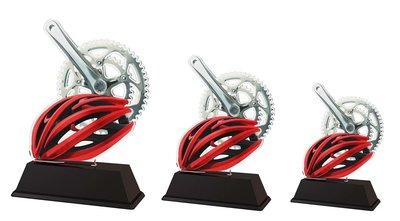 Bijzondere wieler sportprijs, in 3 groottes.